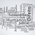 nuvem-editora-boreal-estudos-contemporaneos-de-direitos-humanos